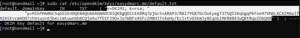 sudo cat /etc/opendkim/keys/domain.com/default.txt
